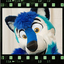 Eurofurence 2016 fursuit photoshoot. Preview picture of Ari