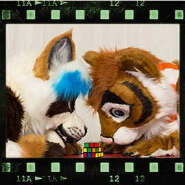 Eurofurence 2016 fursuit photoshoot. Preview picture of Lee Taiger, Wahya