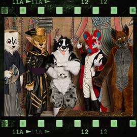Eurofurence 2017 fursuit photoshoot. Preview picture of Fitch, Trip E. Collie, Woxy, …