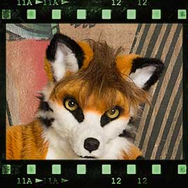 Eurofurence 2017 fursuit photoshoot. Preview picture of Kiddy