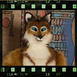 Eurofurence 2017 fursuit photoshoot. Preview picture of Kudy